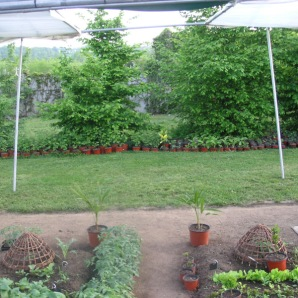 Les Jardins de Marta
