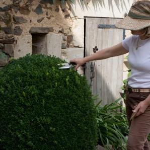 Les Jardins de Marta par Noun