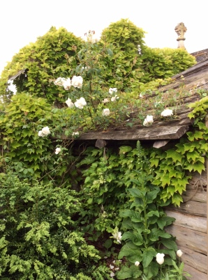 cabane-jardin-3